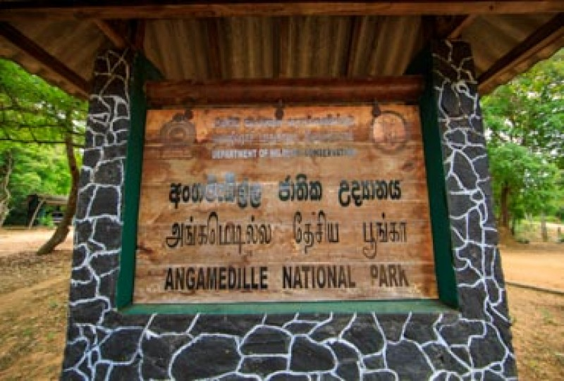 Angammedilla National Park | Gateway to East
